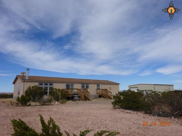 10910 Route 549 Se, Deming, NM 88030 (MLS #20181267) :: Rafter Cross Realty