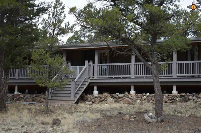 8 Rodeo Drive, Quemado, NM 87829 (MLS #20181352) :: Rafter Cross Realty