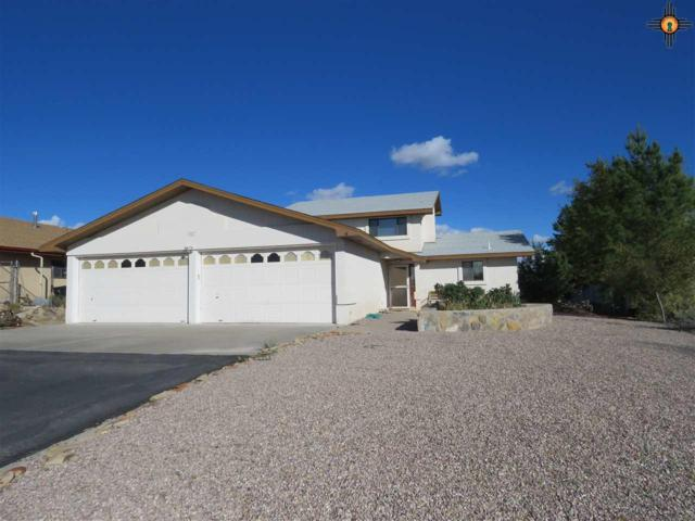 207 Lakeshore  Dr, Elephant Butte, NM 87935 (MLS #20182132) :: Rafter Cross Realty