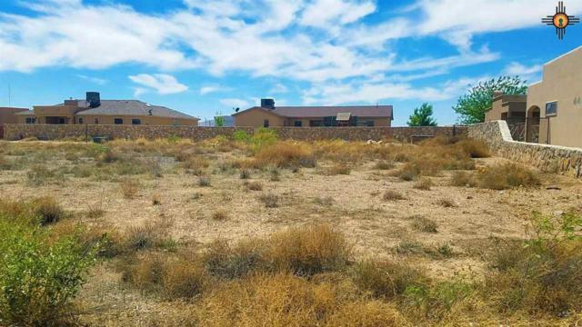 0000 Tularosa Street, Deming, NM 88030 (MLS #20182185) :: Rafter Cross Realty