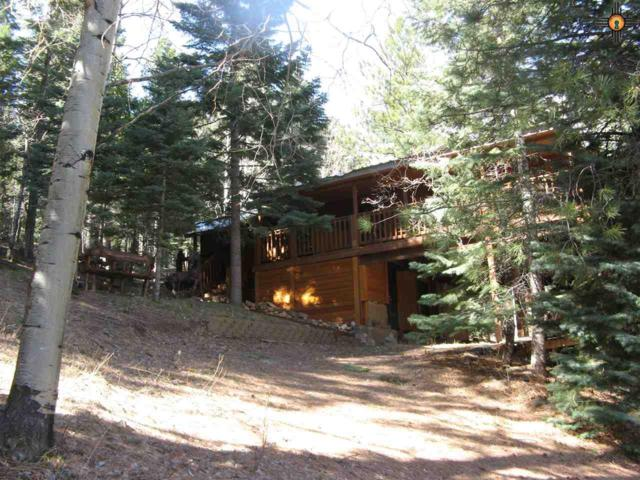 30 E Meadow Lane, Sapello, NM 87745 (MLS #20182245) :: Rafter Cross Realty