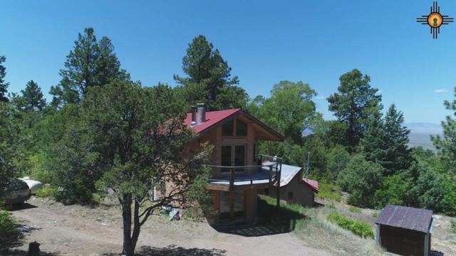 150 Latir, Taos, NM 87756 (MLS #20182482) :: Rafter Cross Realty