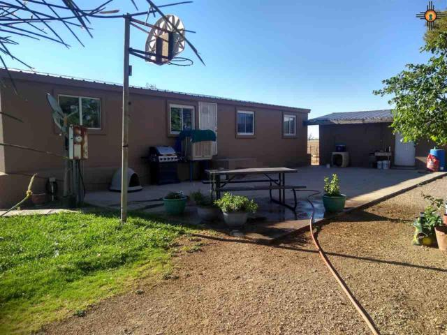 70 Ristra Road, Animas, NM 88020 (MLS #20183052) :: Rafter Cross Realty