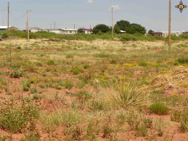 141 Green Place, Conchas Dam, NM 88416 (MLS #20183085) :: Rafter Cross Realty