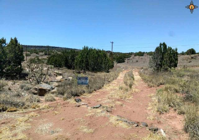 516 Leach Street, Grants, NM 87020 (MLS #20183218) :: Rafter Cross Realty