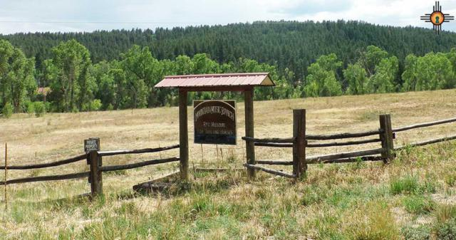 62 Camino Verde, Gallinas, NM 87731 (MLS #20183249) :: Rafter Cross Realty