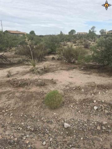 568 & 564 Lakeshore Dr, Elephant Butte, NM 87935 (MLS #20183256) :: Rafter Cross Realty