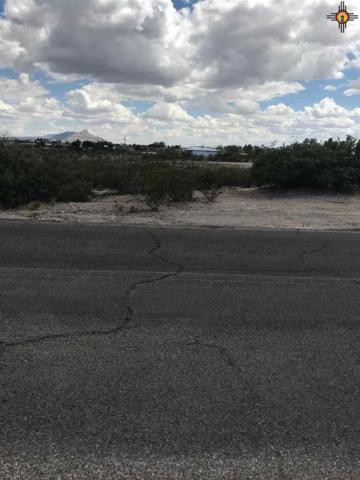200 Springland, Elephant Butte, NM 87935 (MLS #20183259) :: Rafter Cross Realty