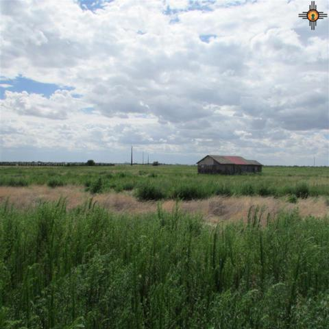 440 S R Rd O, Portales, NM 88130 (MLS #20183339) :: Rafter Cross Realty