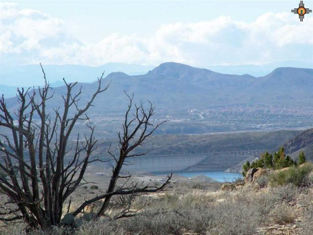 14 Monterrey Point, Truth Or Consequences, NM 87901 (MLS #20183592) :: Rafter Cross Realty