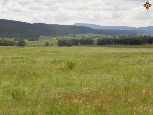TBD County Road A012, Mora, NM 87752 (MLS #20183691) :: Rafter Cross Realty