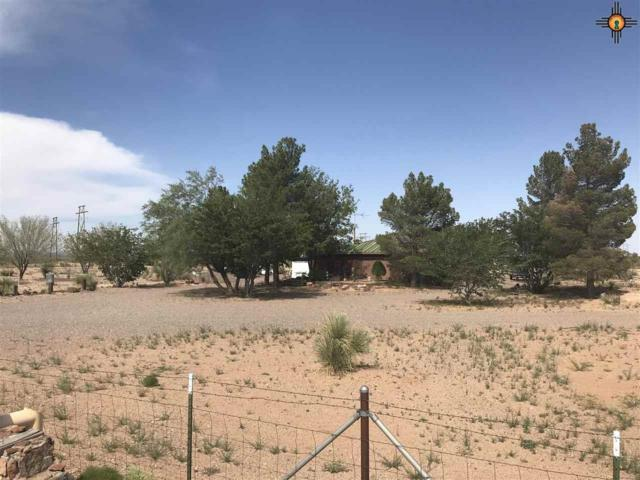 2610 Goodsight Rd, Deming, NM 88030 (MLS #20183751) :: Rafter Cross Realty