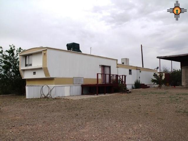 38 Buggy Ride Road, Caballo, NM 87931 (MLS #20183808) :: Rafter Cross Realty