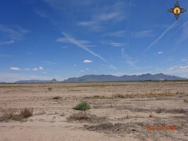 00 San Acacia Sw, Deming, NM 88030 (MLS #20183892) :: Rafter Cross Realty