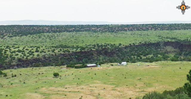 Off CR C53d, Maes, NM 87701 (MLS #20183905) :: Rafter Cross Realty