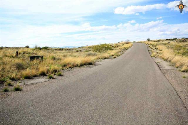 Lot 29 Champagne Hills Road, Truth Or Consequences, NM 87901 (MLS #20184046) :: Rafter Cross Realty