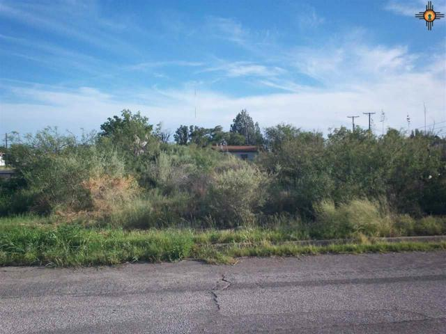 xxxx S. Gold Ave, Deming, NM 88030 (MLS #20184115) :: Rafter Cross Realty
