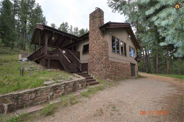 21 Alta Vista, Rociada, NM 87742 (MLS #20184123) :: Rafter Cross Realty