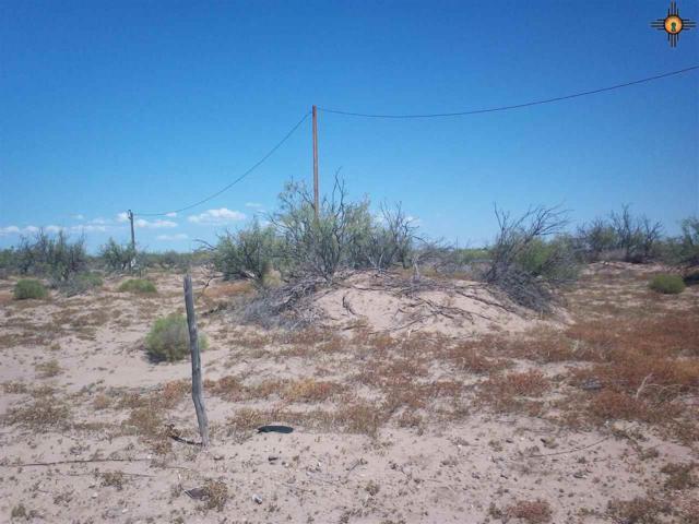 000 Comanchero Road Sw, Deming, NM 88030 (MLS #20184319) :: Rafter Cross Realty