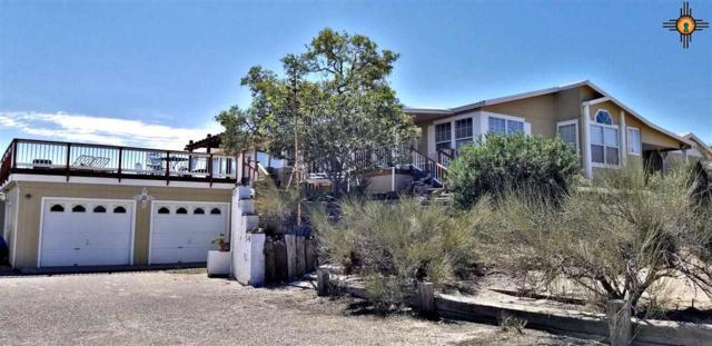 213 Trout Rd, Elephant Butte, NM 87935 (MLS #20184372) :: Rafter Cross Realty