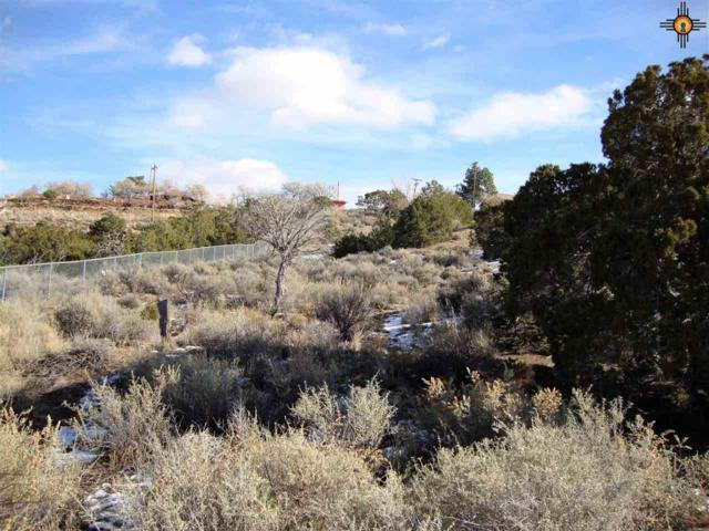 TBD Anton Ave And Tanner Ave, Gallup, NM 87301 (MLS #20184577) :: Rafter Cross Realty