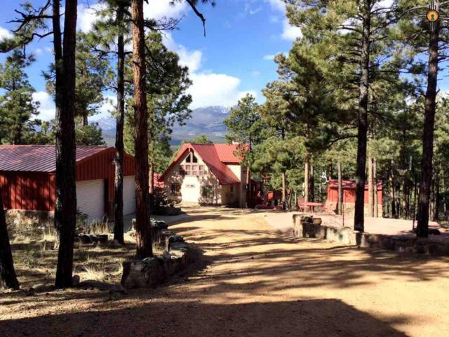 131 County Road A001, Mora, NM 87732 (MLS #20184603) :: Rafter Cross Realty