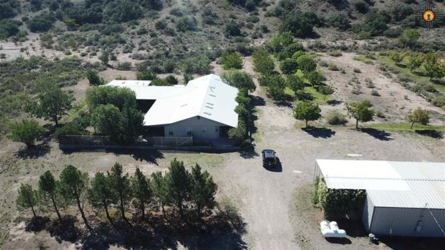 320 Animas Creek, Caballo, NM 87931 (MLS #20184787) :: Rafter Cross Realty