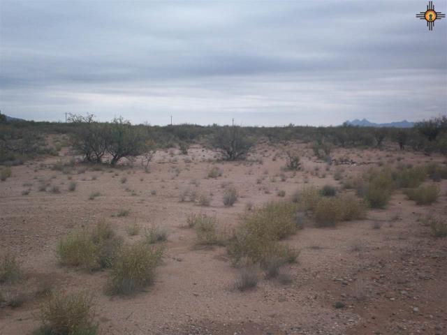0000 Quando Lane Sw, Deming, NM 88030 (MLS #20184826) :: Rafter Cross Realty