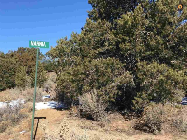 TBD Juniper Rd., Gallup, NM 87301 (MLS #20184918) :: Rafter Cross Realty
