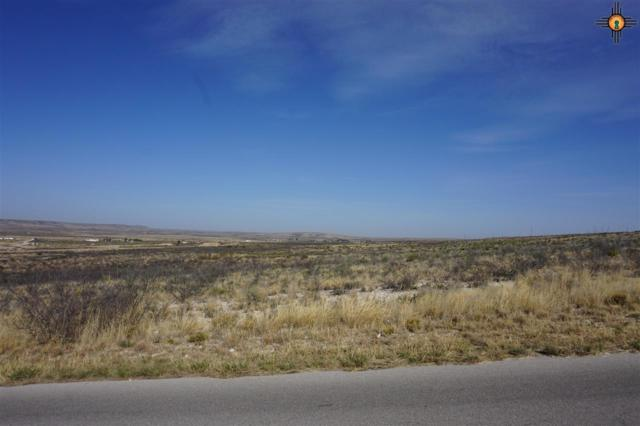 Lot 2 Miehls Dr, Carlsbad, NM 88220 (MLS #20184953) :: Rafter Cross Realty