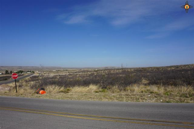 Lot 3 Miehls Dr, Carlsbad, NM 88220 (MLS #20184954) :: Rafter Cross Realty