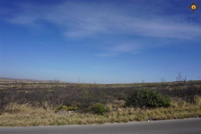 Lot 5 Miehls Dr, Carlsbad, NM 88220 (MLS #20184955) :: Rafter Cross Realty