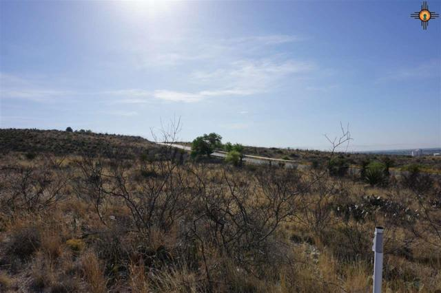 Lot 8 Miehls Dr, Carlsbad, NM 88220 (MLS #20184957) :: Rafter Cross Realty