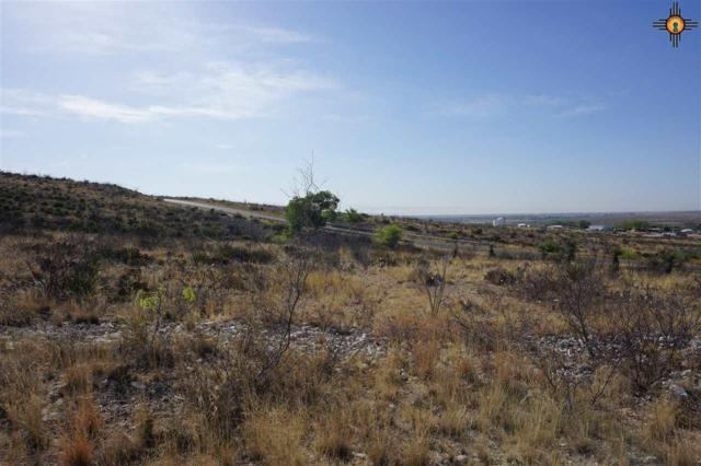 Lot 9 Miehls Dr, Carlsbad, NM 88220 (MLS #20184958) :: Rafter Cross Realty