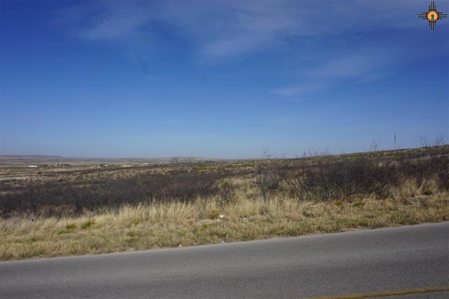 Lot 10 Miehls Dr, Carlsbad, NM 88220 (MLS #20184959) :: Rafter Cross Realty