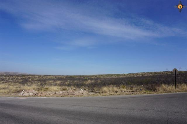 Lot 4 Miehls Dr, Carlsbad, NM 88220 (MLS #20184960) :: Rafter Cross Realty