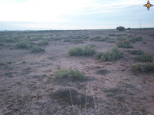 xxxxx Bello Road Se, Deming, NM 88030 (MLS #20185074) :: Rafter Cross Realty