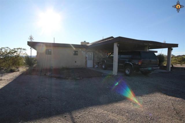 150 Huron, Elephant Butte, NM 87935 (MLS #20185075) :: Rafter Cross Realty