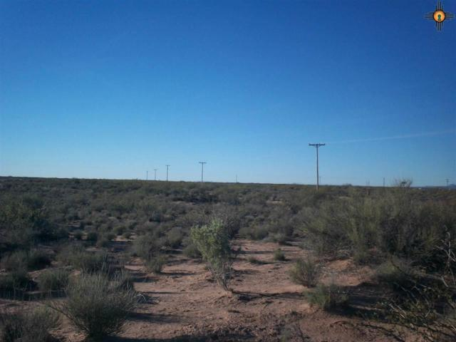 xxxx Cholla Road Se, Deming, NM 88030 (MLS #20185081) :: Rafter Cross Realty