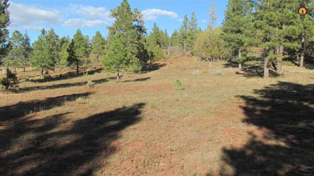 TBD A Forest Road 157, Fort Wingate, NM 87321 (MLS #20185205) :: Rafter Cross Realty