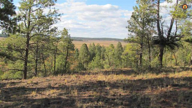 TBD B Forest Road 157, Fort Wingate, NM 87321 (MLS #20185206) :: Rafter Cross Realty