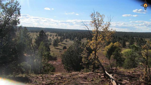 TBD C Forest Road 157, Fort Wingate, NM 87321 (MLS #20185207) :: Rafter Cross Realty