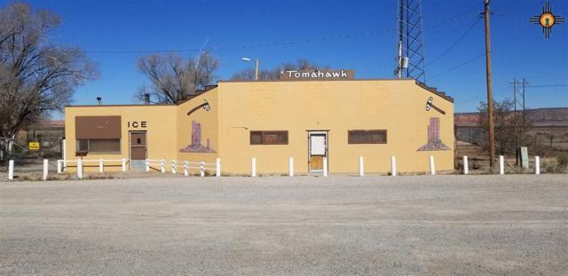 1523 State Highway 122, Prewitt, NM 87045 (MLS #20185279) :: Rafter Cross Realty