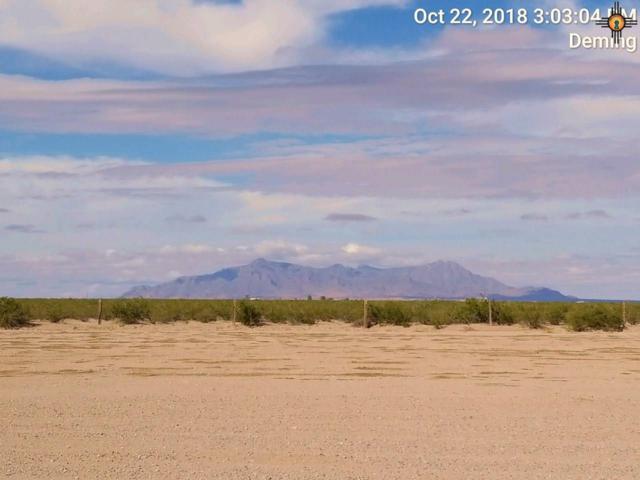 00 Camino Ocho Rd Se, Deming, NM 88030 (MLS #20185320) :: Rafter Cross Realty