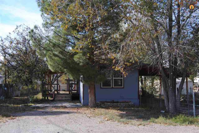 127 Doris Avenue, Williamsburg, NM 87942 (MLS #20185327) :: Rafter Cross Realty