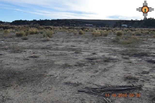 TBD Blackhat, McKinley, NM 87301 (MLS #20185349) :: Rafter Cross Realty