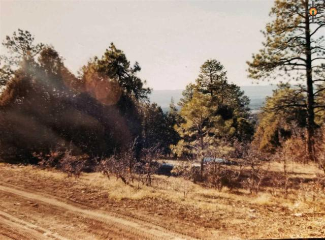 0000 Ponderosa, Chama, NM 87520 (MLS #20185388) :: Rafter Cross Realty