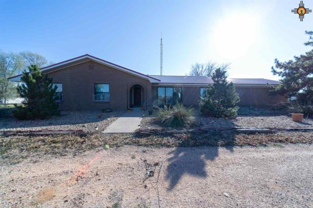 1091 Curry Road 6, Clovis, NM 88101 (MLS #20185404) :: Rafter Cross Realty