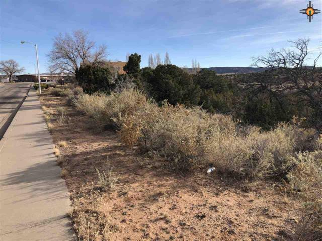 TBD Susan Ave., Gallup, NM 87301 (MLS #20185411) :: Rafter Cross Realty