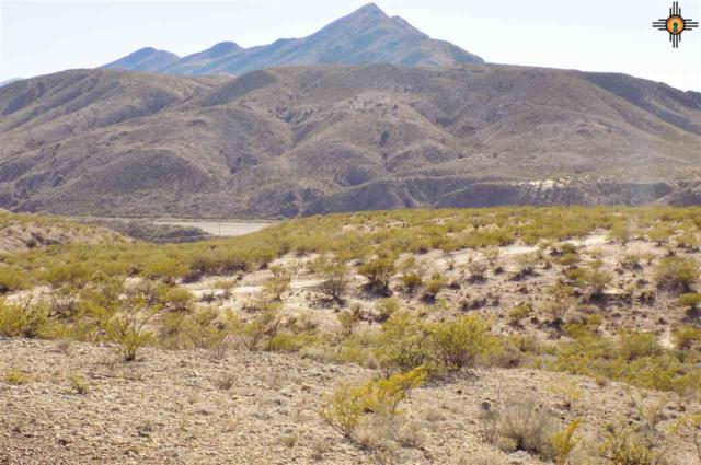 4600 Hwy 51, Truth Or Consequences, NM 87901 (MLS #20185420) :: Rafter Cross Realty